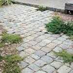 雑草対策 Floor