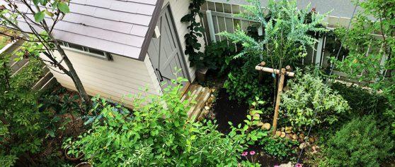 ガーデンシェッド完成