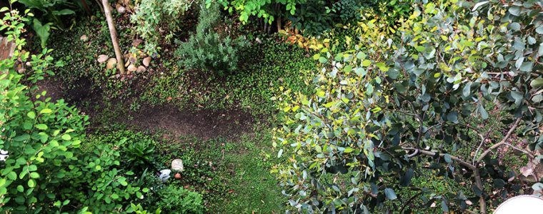 自宅の庭をプチ公園に♪