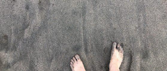 アーシングと海岸